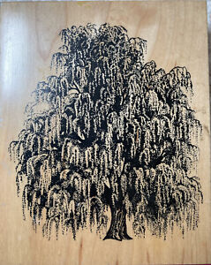 WEEPING WILLOW TREE Wood mounted rubber stamp PSX K-1455  Excellent condition