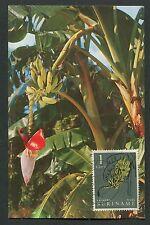 SURINAME MK 1961 FLORA FRÜCHTE BANANEN MAXIMUMKARTE MAXIMUM CARD MC CM d7791