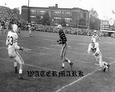 CFL 1954 Hamilton Tiger Cats vs Toronto Argonauts Game Action 8 X 10 Photo Pic