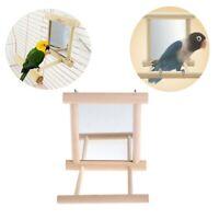 Mirror Pet Bird Wooden Play Toy with Perch For Parrot Parakeet Finch Lovebird US