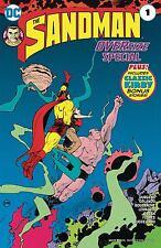 Sandman Special #1 (DC-2017)