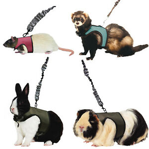 Kaytee Small Animal Harness & Stretchy Leash Asst Colors   (Free Shipping)