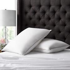 Hotel Collection híbrido 2 paquete de almohada hacia abajo por ienjoy Home
