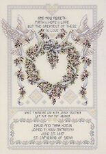 Cross Stitch Kit ~ Janlynn Platinum Wedding Doves Marriage Day Record #080-0438