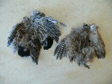 Mearns Quail - Mearn's - 2 skins - Male & Female - Feathers - Fly Tying Material