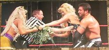 Sable & Luna Vachon DOUBLE SIDED Poster WWE WWF Diva Rena Mero Lesnar Playboy