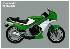 KAWASAKI Poster KR250 1984 1985 1986 Suitable to Frame