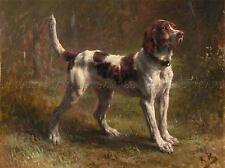 Animal peinture portrait bonheur limier briquet Hound Art Imprimer lah424a