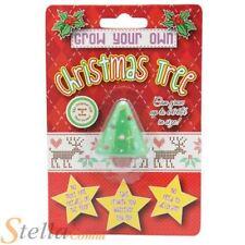 Grow Your Own Christmas Tree Novelty Xmas Secret Santa Stocking Filler