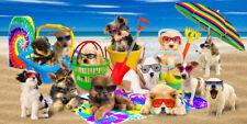 Cool Dogs Beach Towel