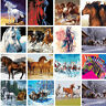40*50CM DIY Acrylic Paint By Number Kit Oil Painting Wall Decor On Canvas Horses