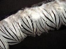 F380 PER 30cm - White Alectoris chukar Pheasant Hackle feather fringe Trim