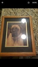 English Mastiff canvas art print