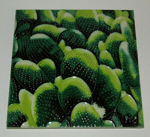 "Cactus Art Tile 8""x8"" New Desert Green Decorative Ceramic 8 Inch BD-2069"