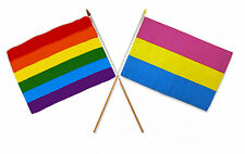 "12x18 12""x18"" Wholesale Combo Gay Pride Rainbow & Pansexual Stick Flag"