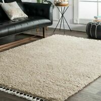 nuLOOM Casual Plush Shag Neva Area Rug in Beige
