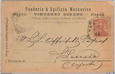 53810  - ITALIA REGNO - Storia Postale: CARTOLINA pubblicitaria da NAPOLI - 1895