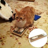 Kätzchen Katze Scratch Pad Wellpappe Spielzeug spielen Mat Scratcher Kralle J5X4