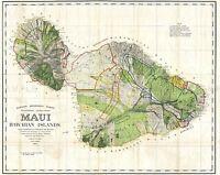 MAP ANTIQUE 1885 ALEXANDER MAUI HAWAII USA LARGE REPLICA POSTER PRINT PAM1966