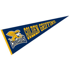 "Canisius Golden Griffins Wool 12"" x 30"" Raised Printed Pennant"