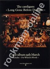 Cardigans The Long Gone Before Daylight LP Advert