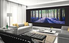 150cm x 50cm CANVAS PRINT ART PAINTING woods forest tree LANDSCAPE  Australia