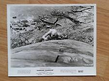 MARIO BAVA Danger: Diabolik - US b/w still #85 comic classic 1967 M.MELL J.P.LAW