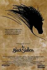 BLACK STALLION Movie POSTER 27x40 Kelly Reno Mickey Rooney Teri Garr Clarence