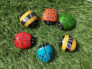 HAND PAINTED PEBBLES STONES SET OF 6 CUTE LADYBIRDS BEES🐞RAINBOW COLOURS GIFT