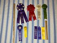 Vintage Rosette Award Ribbon Swimming Purple Green Red Wyoming 70's lot