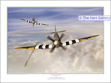 Supermarine Spitfire Aeroplane Aircraft World War 2 WW2 Signed Print Picture
