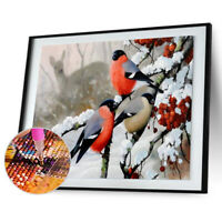 5D DIY Winter Birds Full Drill Diamond Painting Cross Stitch Embroidery Kit R1BO