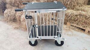 "Titan 1 Berth MEDIUM Aluminium Dog Show Trolley with 8"" All Terrain Wheels"