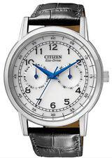 Citizen Eco-Drive Men's Watch (AO9000-06B) Black Band , w/box