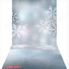 Chrismas10'x20' Computer-painted (CP) Season Scenic background backdrop SM047B88