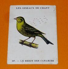 CHROMO 1932 CASINO N°107 LES OISEAUX DE CHANT LE SERIN DES CANARIES