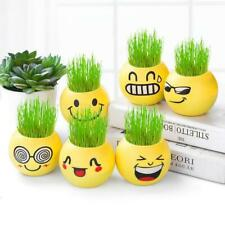 2020 office Mini grass doll grass head doll negative ion potted table top smarts