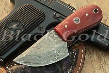 Custom Handmade DAMASCUS HUNTING / SKINNER KNIFE SK-882.BUY 2 GET 1 STEEL FOLDER