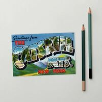 Greetings from The Catskill Mountains New York Standard Postcard