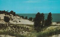 LAM(T) Chesterton, IN - Indiana Dunes State Park - View of Lake Michigan