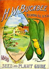 1898 Lima Vintage Fruit Vegetable Seed Packet Catalogue Advertisement Poster