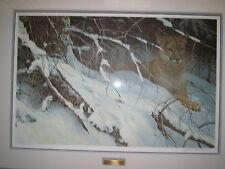 Robert Bateman prints