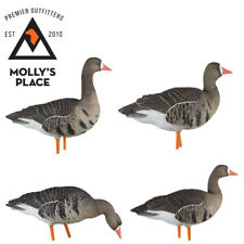 Axian-X 9014, Specklebelly Geese AXP Painted Fusion Decoys 6 Pack