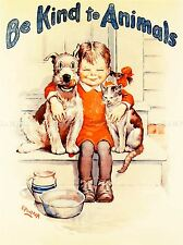 PROPAGANDA ANIMAL WELFARE CHARITY KID CAT DOG KIND ART POSTER PRINT LV6953