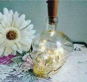 Glass Skull Bottle With Fairy Lights Decor