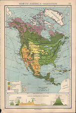 1936 MAP ~ NORTH AMERICA VEGETATION FOREST CULTIVATION UNITED STATES MEXICO