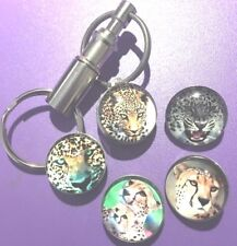 5 Snap Multicolor Silver Push-And-Release Double Keychain. Big Cats � Leopards
