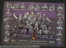 NRL Melbourne Storm 2012 Premiers Storm Force Print