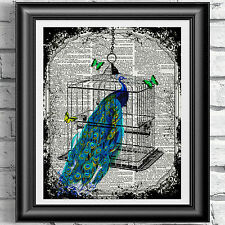 PEACOCK IN A BIRDCAGE wall decor on real ANTIQUE DICTIONARY BOOK PAGE