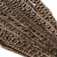 Natural 20Pcs Pheasant Tail Feathers 12-14 Inch Long Craft Party DIY GP3